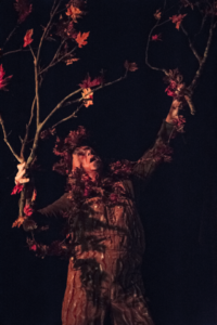"""Luke of the Lake and Will of the Woods (A Cartoon Fantasy)"" @ Hip Pocket Theatre 